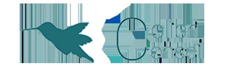 Colibri Conseil Logo